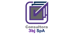 Consultora 3bj logo